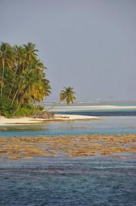 maldives-reflex 019