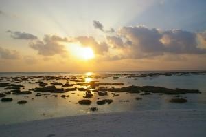 maldives-reflex 072 (1)