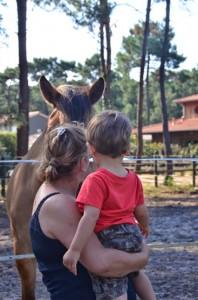 saturnin-cheval