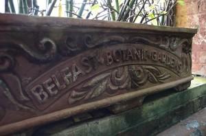 belfast-botanic-garden