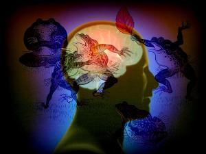 cerveau-etrange