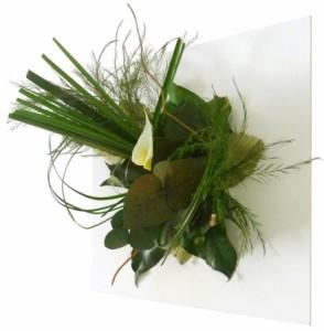 tableau-vegetal-stabilise