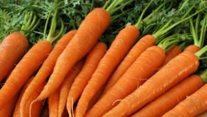 creme_carotte_nu