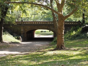 central-park-pont-2