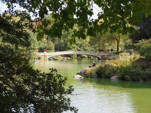central-park2