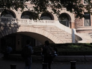 museum-histoire-naturelle-new-york