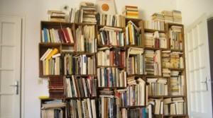 Comment-ranger-ses-livres-Quelques-idees-avec-la-bibliotheque-animee
