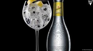 le-gin-tonic-un-cocktail-classique