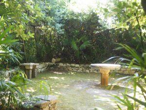 arboretum_trsteno_croatie_4