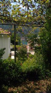 terrasse-kotor