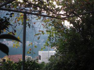 terrasse-kotor-montenegro_2