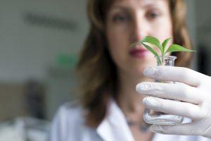 Femme scientifique tient une pipette avec une plante à l'intérieur