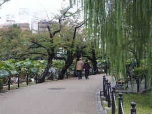 Promenade autour du lac du Parc Ueno
