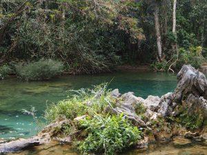Le bassin de cristal de El Nicho, Cuba