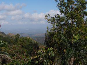 Paysage antillais : Cuba