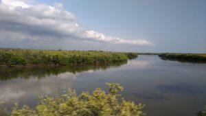 Des nuages se reflétant dans les marais